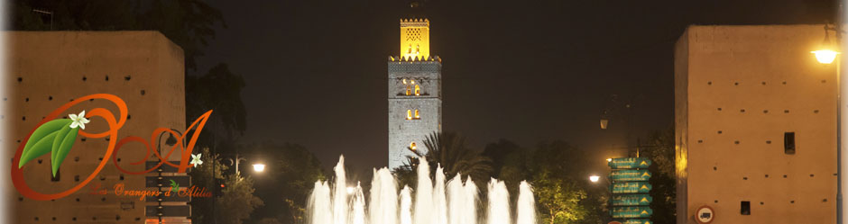 header-fontaine-mamounia-nuit