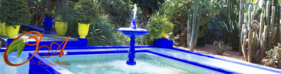 header-majorelle-fontaine