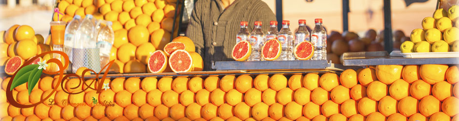 header-stand-oranges